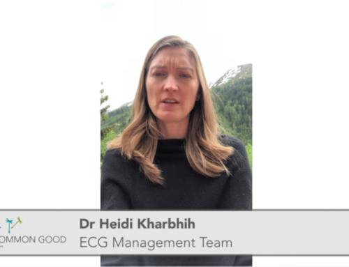 New ECG Video: Crisis Resilience or Survival in a Crisis