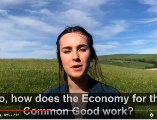 ECG Brighton, UK launch with video